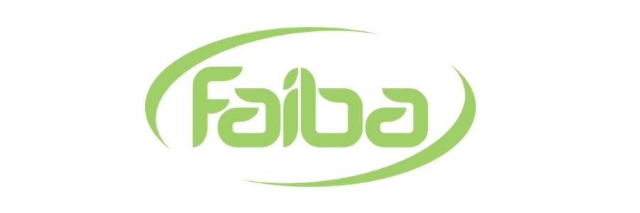 Faiba 4G Data APN settings